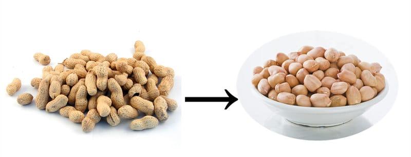peanut sheller china